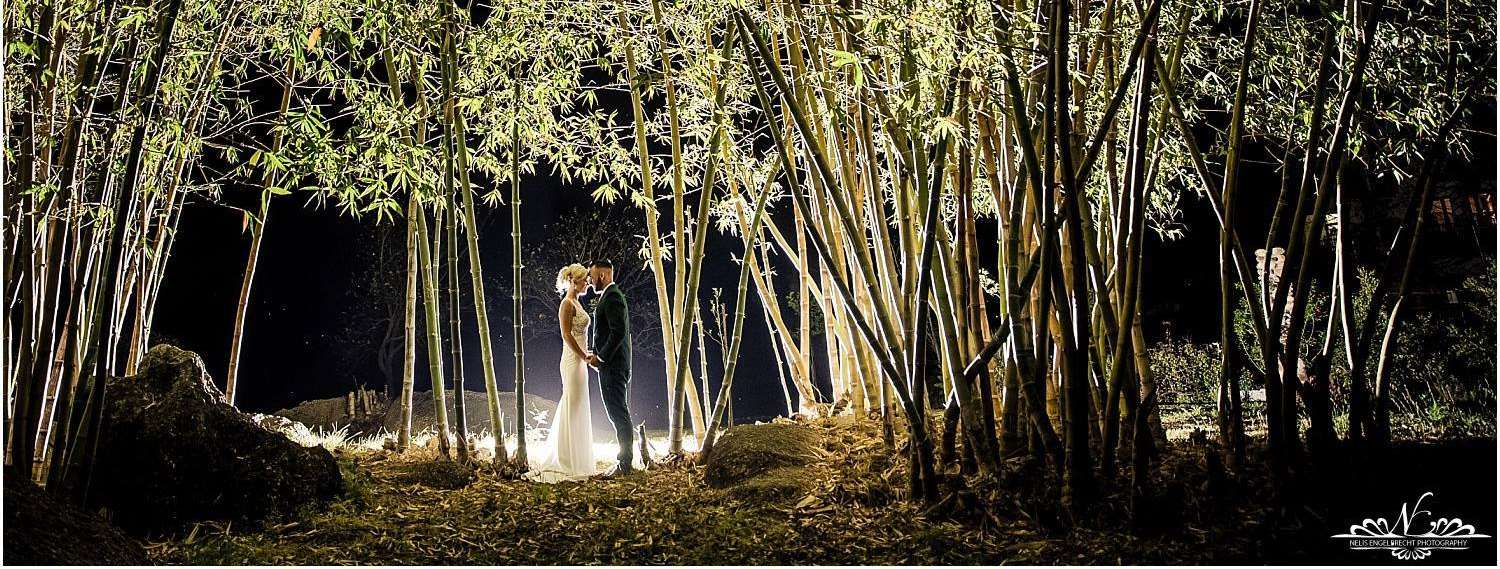 Hudsons Weddings Bamboo Garden at night